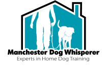manchesterdogwhisperer.co.uk